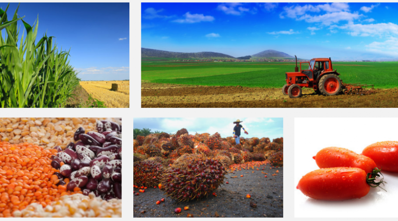 Agricultural commodities prices